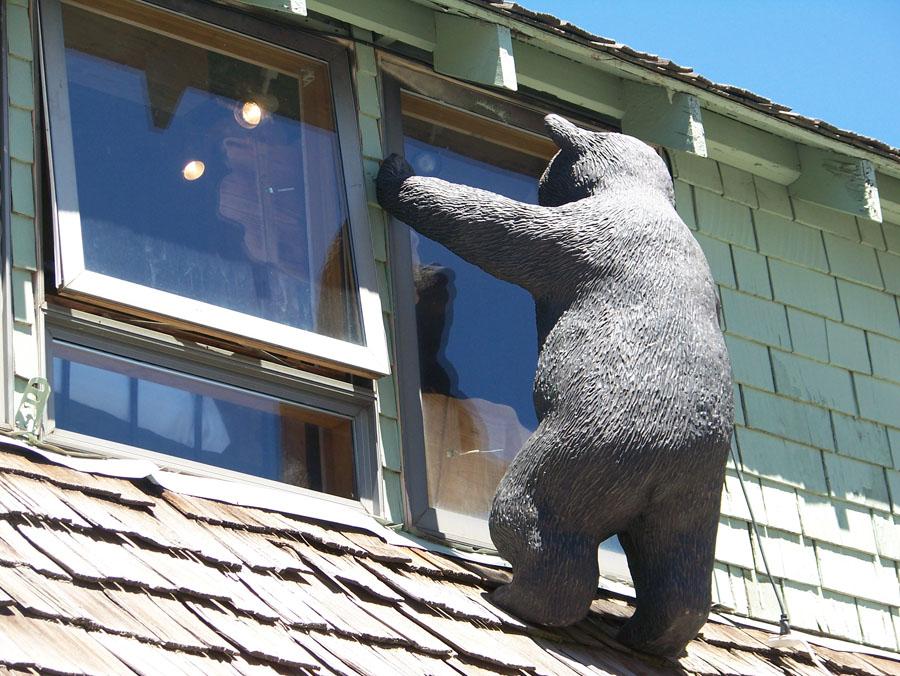 Cabin Fever Tahoe Bear Necessities